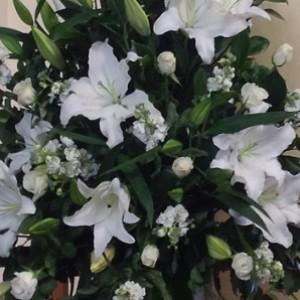 funeral_u